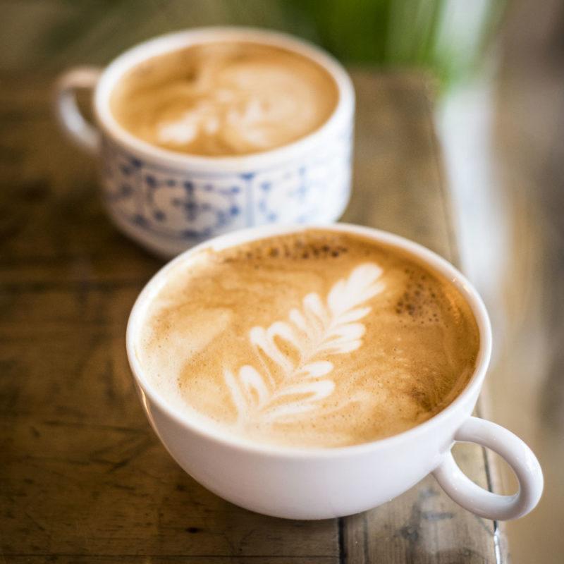 Café de spécialité Lorient Code 0 rosetta latte art crédit photo MLG Photographe